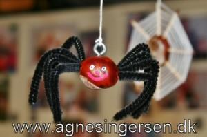 kastanje edderkoppen14