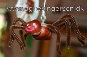 kastanje edderkoppen17