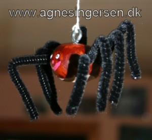 kastanje edderkoppen18