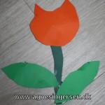 Nem tulipan