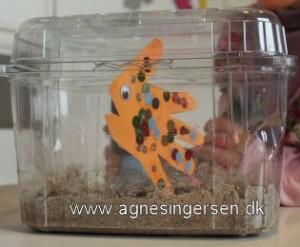 akvarie14