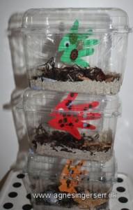 akvarie5