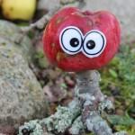Æblefidusen