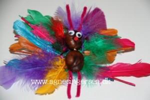 sommerfugl24