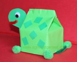 skildpadde2