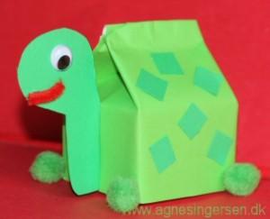 skildpadde5