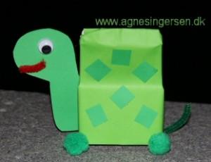 skildpadde6