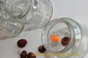 glasgræskar1