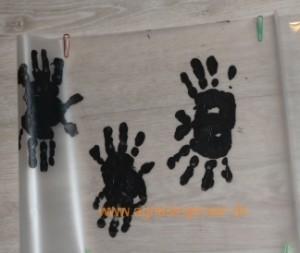 håndedderkop3