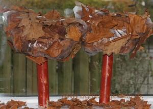 efterårstræer8