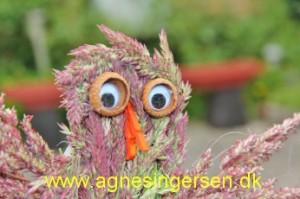 græsfugl (9)