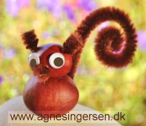Egern (4)