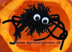 garnedderkope