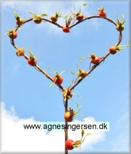hjertehyben (5)
