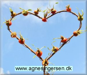 hjertehyben (8)