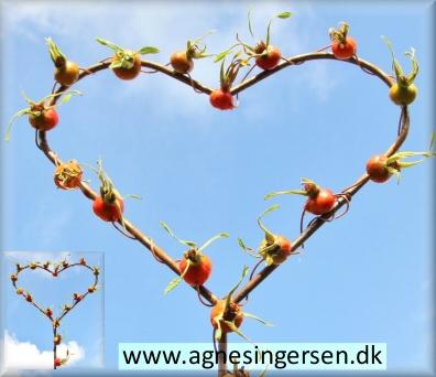 hjertehyben (9)