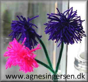 asters2