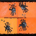 Spindelvæv med edderkopper