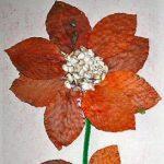 Solsikkefrøblomsten
