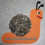 Snegl af sneglehuse