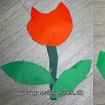 Tulipan nem at klippe