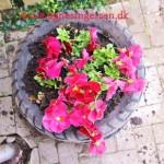 Blomsterdæk